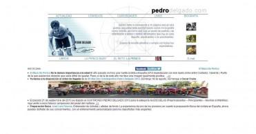 Pedro Delgado: página web oficial